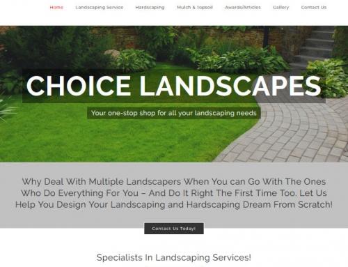 Choice Landscapes